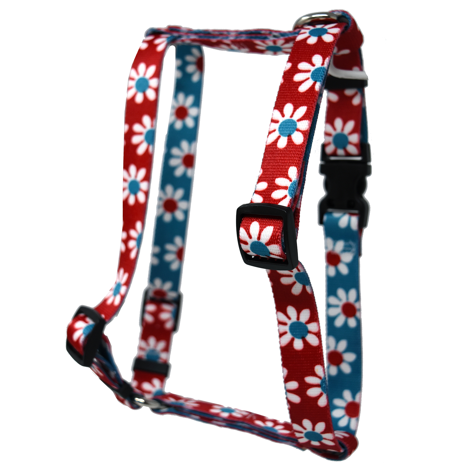 Red & Teal Daisy Roman H Harness